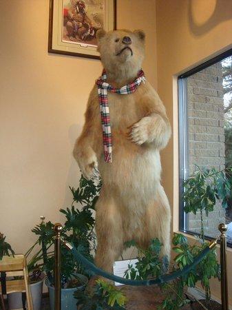 Western Heritage Inn: Wallace , the Kodiak Bear.