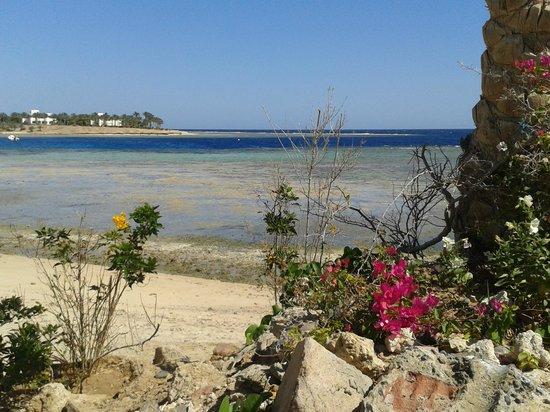 Brayka Bay Reef Resort: mare