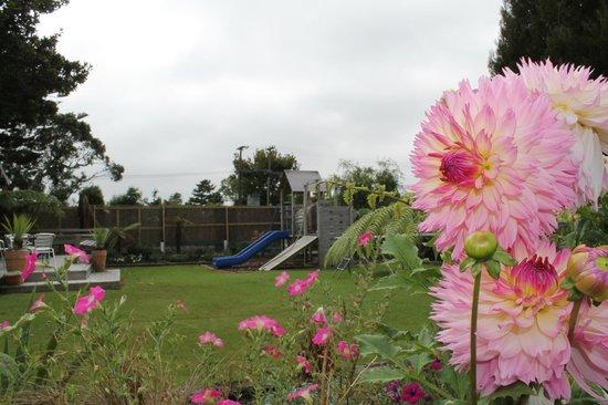 Buller Bridge Motel : Childrens Playground