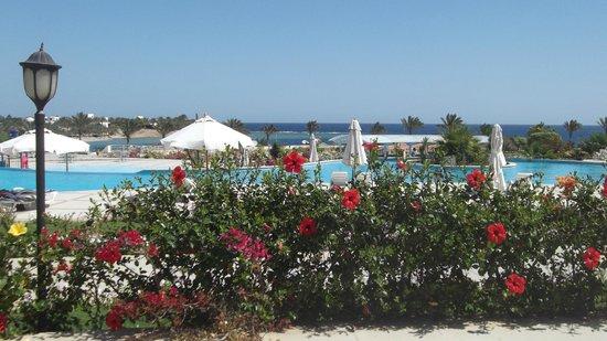 Brayka Bay Reef Resort: piscina di fronte al ristorante