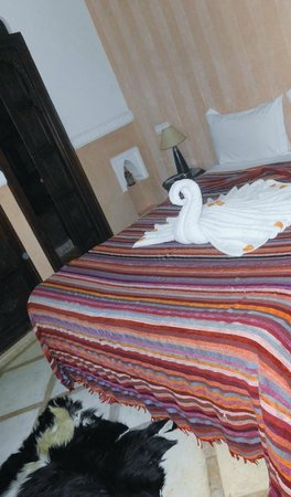 Riad Itrane : Comfortable bed and fancy towel work and rose petals