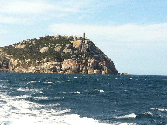 Wildlife Coast Cruises: the Prom lighthouse