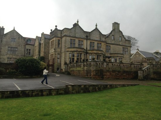 Dunsley Hall: Moggy December