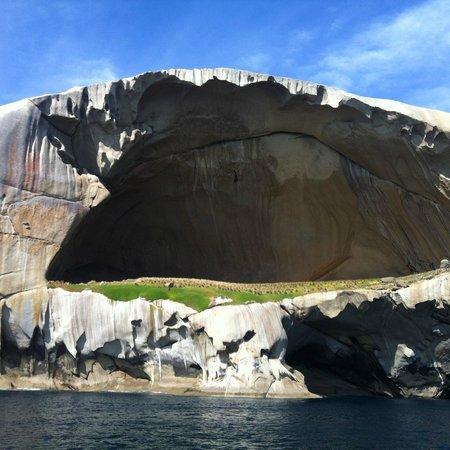 Wildlife Coast Cruises: Skull Rock up close
