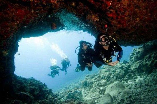 L'Ametlla de Mar, إسبانيا: Ametlla Diving