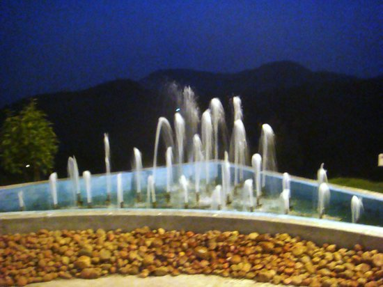 Fountain - Picture of Accord Highland Hotel Ooty, Ooty