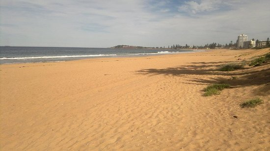 Quality Hotel Sands Narrabeen: This is the beach straight over the road