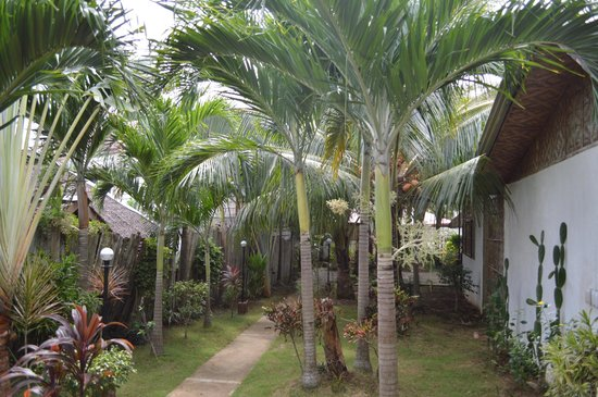 Paragayo Resort : Garden view from the family bungalow