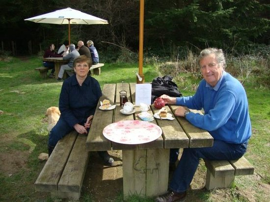 Roses Pop-Up Vintage Tea Room : Dining in the woods.