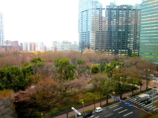 Hyatt Regency Tokyo: Tokyo Central Park from the room