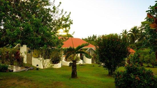 Daniella's Bungalows: Garden