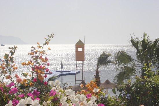 Savoy Sharm El Sheikh: Red Sea