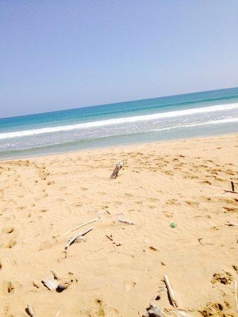 Hotel Riu Palace Punta Cana : Beaches