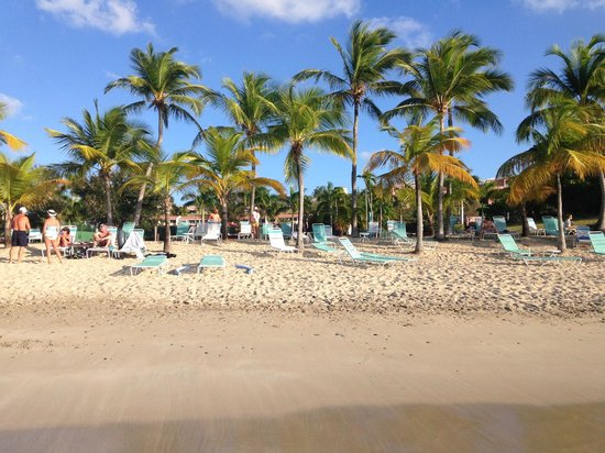 The Buccaneer -- St Croix: Mermaid Beach (the