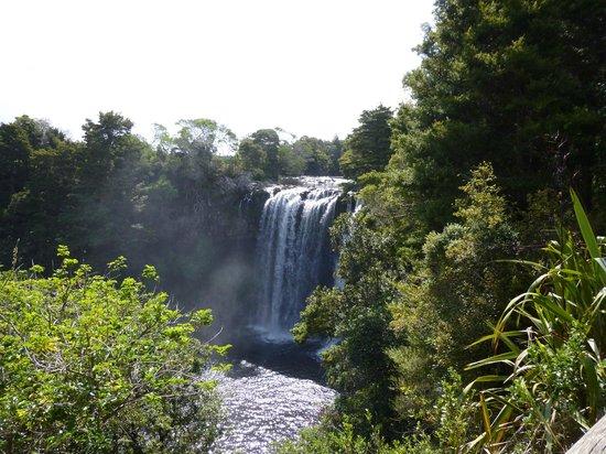 Rainbow Falls Walk: The Falls