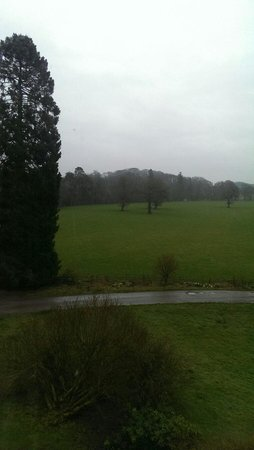 Friars Carse Country House Hotel: Views from the Oak room, shame about the weather