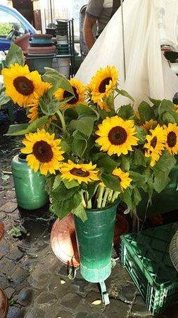 Casa de'Fiori: Flowers in Campo di fiori