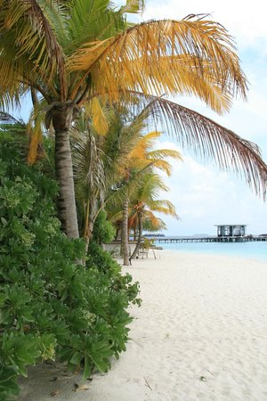 Jumeirah Dhevanafushi: view from a beach