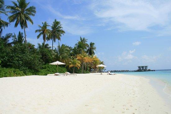 Jumeirah Dhevanafushi: beach view