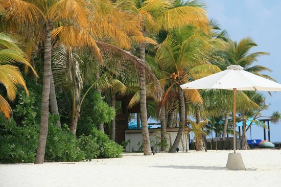 Jumeirah Dhevanafushi: from beach