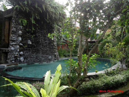 Tunjung Mas Resort Ubud: kolam renang