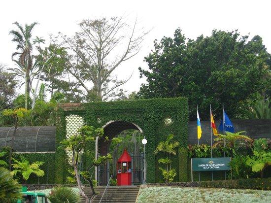 Ботанический сад - Picture of Botanical Gardens (Jardin Botanico), Puerto de ...