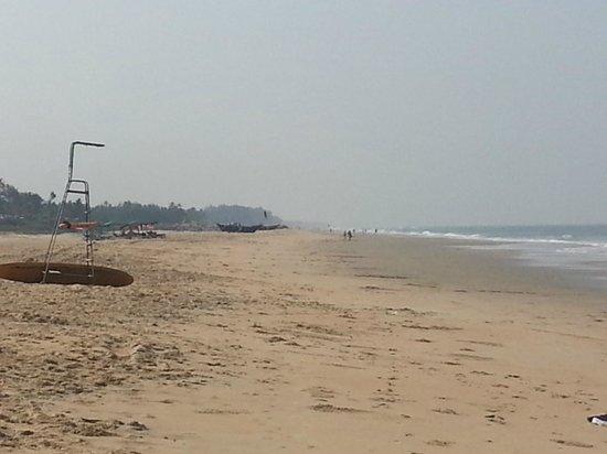 Park Hyatt Goa Resort and Spa : Arossim beach