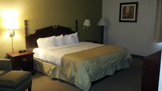 Ramada Plaza Louisville Hotel and Conference Center: King bed, comfort!!!