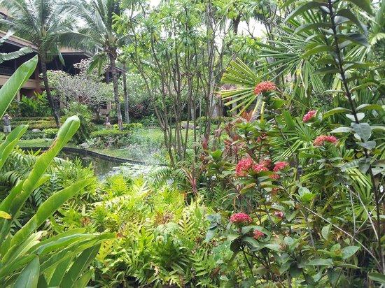Bo Phut Resort & Spa : Hotel Gardens