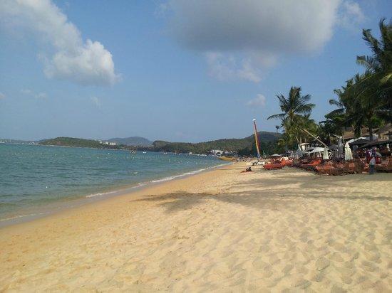 Bo Phut Resort & Spa : The Beach