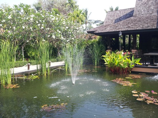 Bo Phut Resort & Spa: Pond beside the restaurant