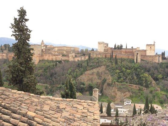 Vista Desde La Terraza De Juan Ranas Picture Of El