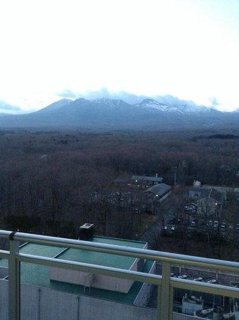 Hotel Epinard Nasu : 部屋からの眺め