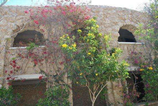 Citadel Azur Resort: 5 корпус с внутренней стороны