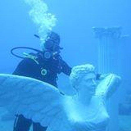 Amphora Dive Center-Daily Tours