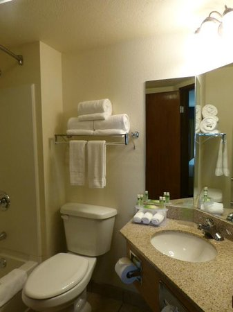 Holiday Inn Express Hotel & Suites Branson 76 Central : One of two bathrooms
