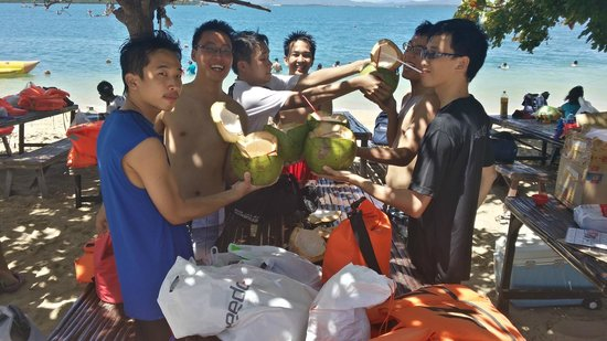 Cowrie Island: Fresh coconut just 45peso