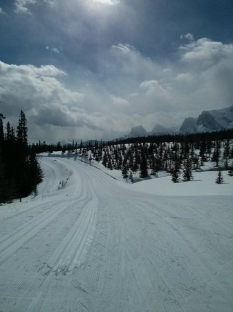 Canmore Nordic Centre Provincial Park : Banff Trail Halfway Point
