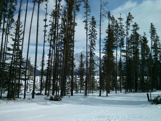 Canmore Nordic Centre Provincial Park: End of Banff Trail