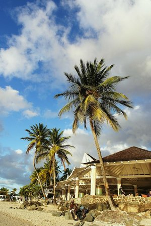 Rendezvous Resort: View of terrace from the beach
