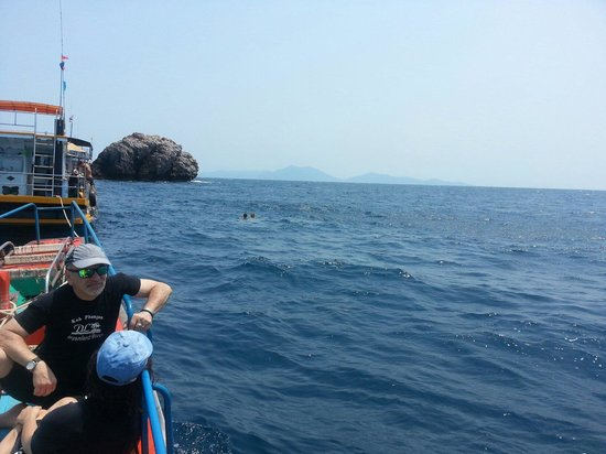Thong Nai Pan Noi : Best Diving in the Gulf @ sailrock!  With Dreamland Diver