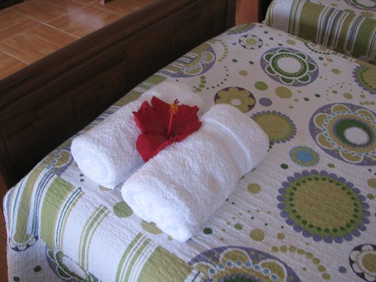 Hostal Cabanas Aorangi: detalles enla habitación