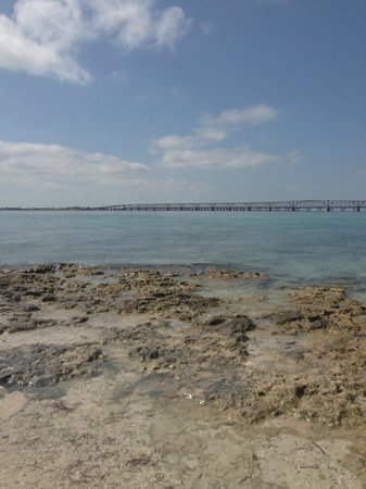 Bahia Honda State Park and Beach : view from island
