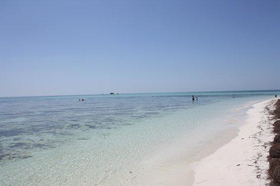 Bahia Honda State Park and Beach: beautiful