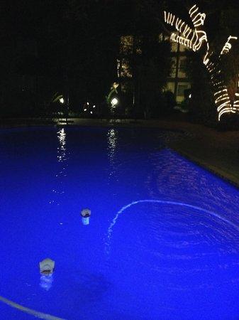 Protea Hotel by Marriott Johannesburg Balalaika Sandton: Sparkling Pool