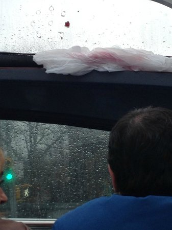 Gray Line New York Sightseeing: Passengers in front tried to block up the leaking roof with their ponchos
