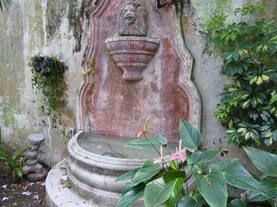 Meson Panza Verde : fountain in our private patio