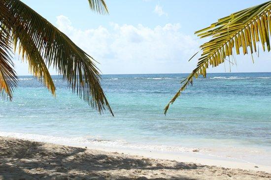 Ryanna Sun: Saona la plage