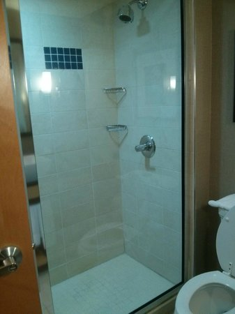 Cambria hotel & suites Raleigh-Durham Airport: shower area-very clean