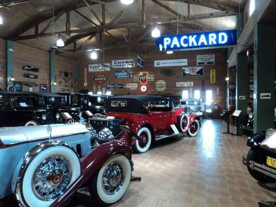 Fort Lauderdale Antique Car Museum: wunderschoene Packards